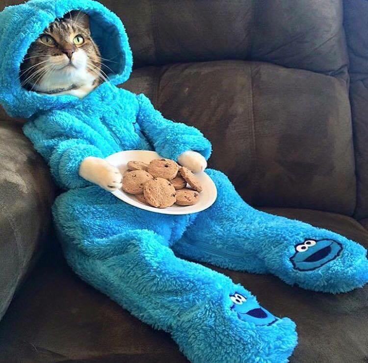 「手工餅乾」不是hand-made cookies!
